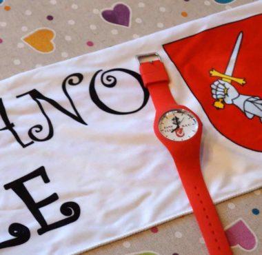Panettonata del Fans Club di Riva San Vitale